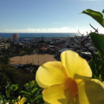沖縄セドリスタの初心者時代【せどりを始める時に意識してやるべきコト】