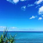 ブログ更新が止まった?!沖縄セドリスタブログの危機?!